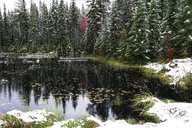 Αντανακλάσεις ένα φθινόπωρο Algonquin στοκ εικόνα