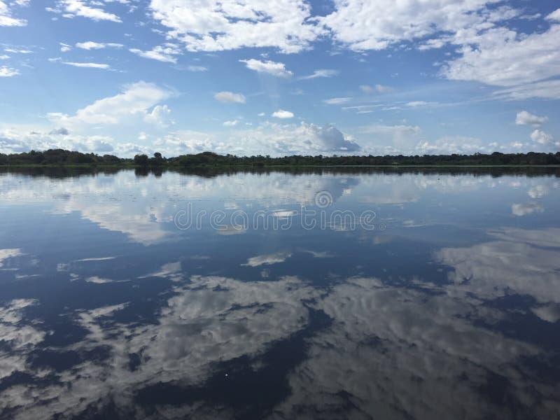 Αντανακλάσεις του Αμαζονίου στοκ εικόνες με δικαίωμα ελεύθερης χρήσης