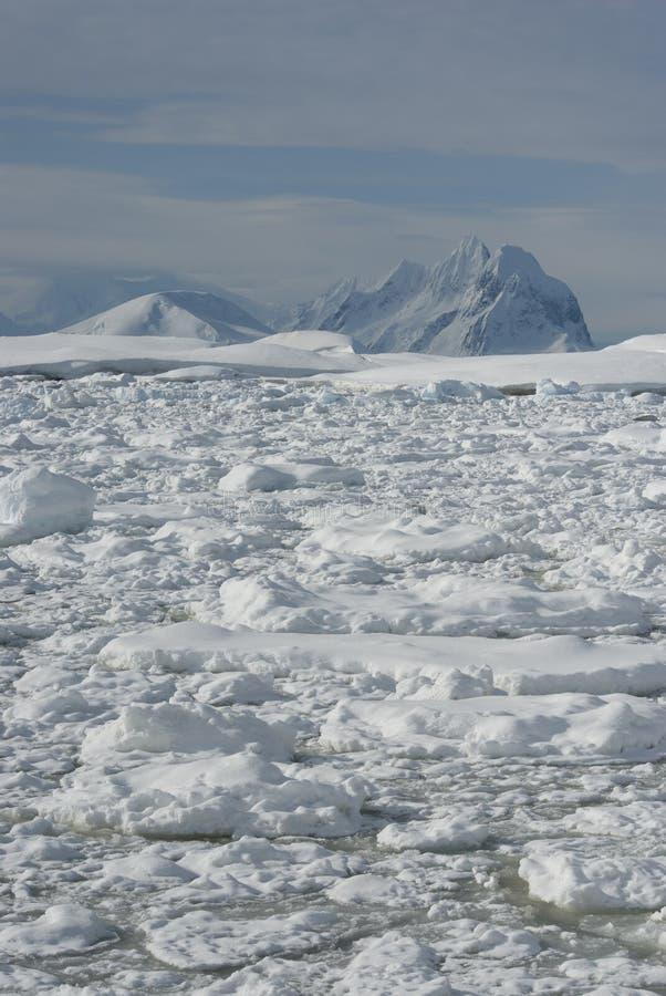 ανταρκτικά βουνά στοκ φωτογραφίες με δικαίωμα ελεύθερης χρήσης