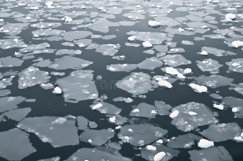 ανταρκτικά παγωμένα ύδατα στοκ εικόνα με δικαίωμα ελεύθερης χρήσης