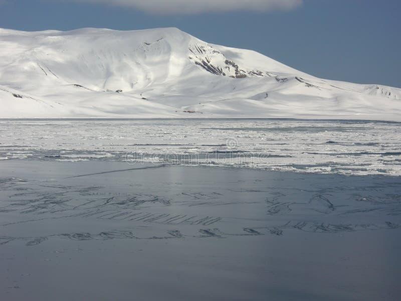 Ανταρκτική Στοκ Εικόνες