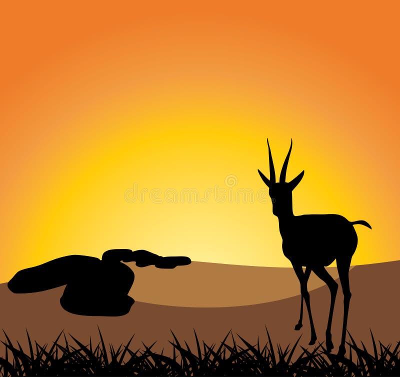 Αντιλόπη σε μια ανασκόπηση του ηλιοβασιλέματος ελεύθερη απεικόνιση δικαιώματος
