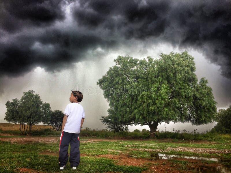 Αντιμετώπιση της θύελλας στοκ εικόνα με δικαίωμα ελεύθερης χρήσης