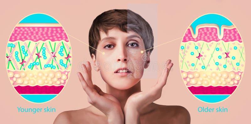Αντι-γήρανση, επεξεργασία ομορφιάς, γήρανση και νεολαία, που ανυψώνουν, skincare, έννοια πλαστικής χειρουργικής στοκ εικόνα