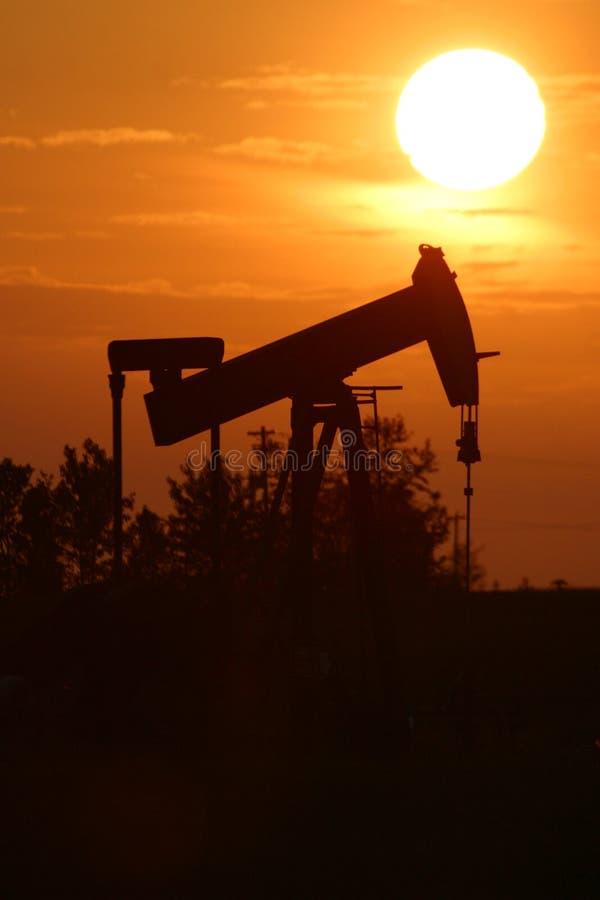 αντλία πετρελαίου γρύλω&n στοκ φωτογραφίες με δικαίωμα ελεύθερης χρήσης