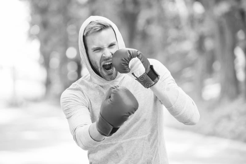 Αντοχή στην εκπαίδευση πυγμαχίας Αθλήτρια συγκεντρωμένη με αθλητικά γάντια που κάνουν πυγμαχία στο φυσικό περιβάλλον Πυγμάχος στοκ φωτογραφίες