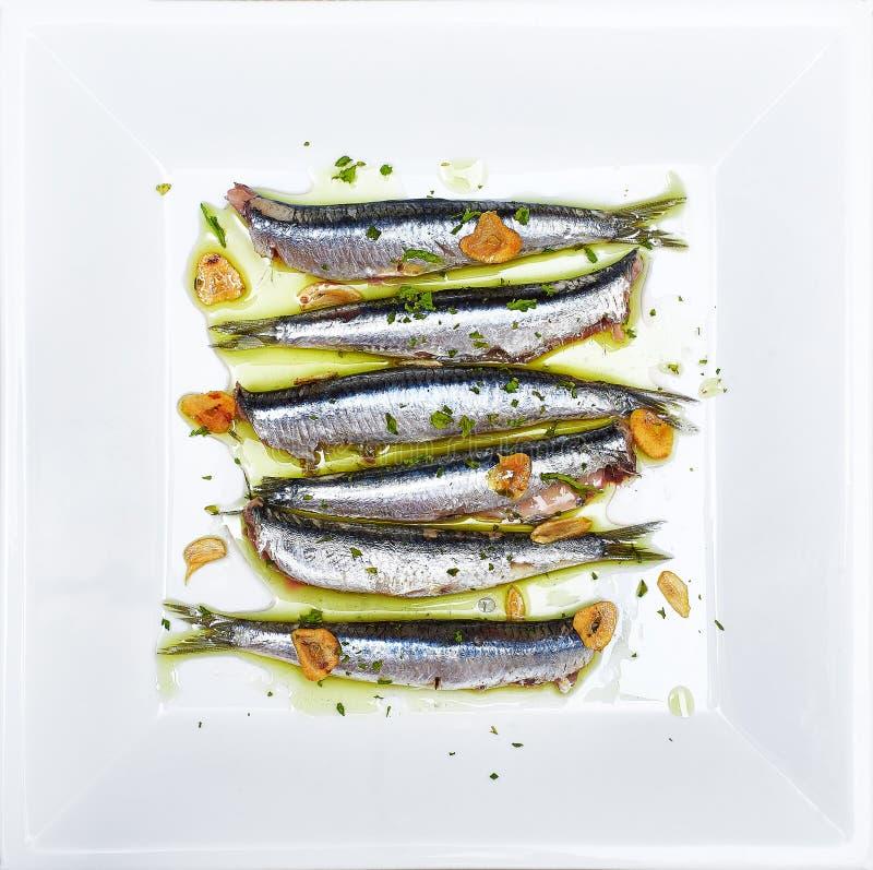 Αντσούγιες που μαρινάρονται στο ελαιόλαδο, που μαγειρεύεται σε μια χαμηλή θερμοκρασία στοκ φωτογραφία με δικαίωμα ελεύθερης χρήσης