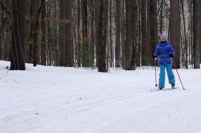 Ανώμαλο να κάνει σκι στα ξύλα στοκ φωτογραφία