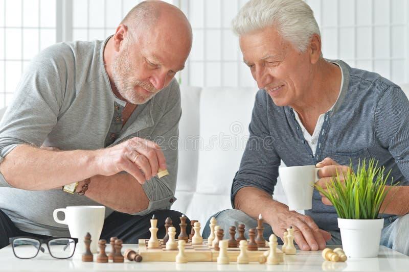 Ανώτερα άτομα που παίζουν το σκάκι στοκ εικόνες με δικαίωμα ελεύθερης χρήσης