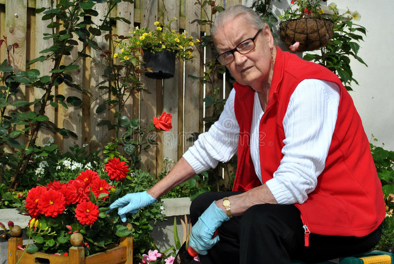 Ανώτερη γυναικεία κηπουρική στοκ φωτογραφία με δικαίωμα ελεύθερης χρήσης