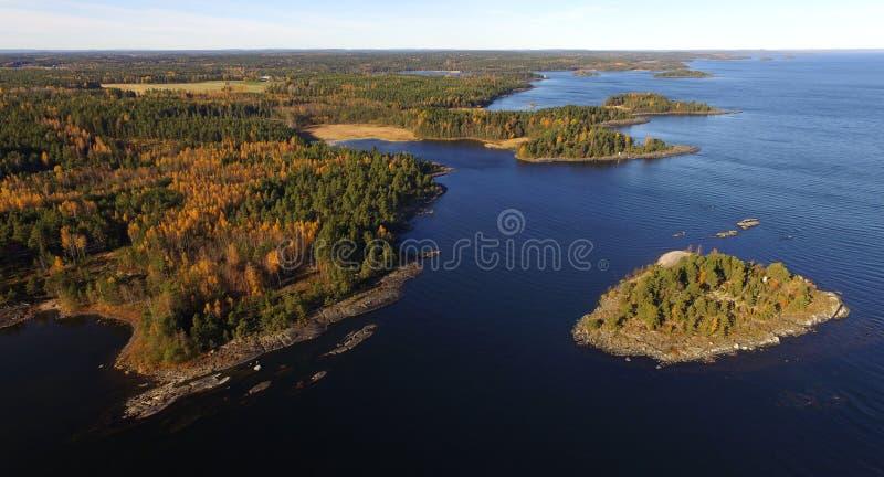 Ανώτερη, εναέρια άποψη λιμνών των νησιών, ξύλα, δύσκολη ακτή στοκ εικόνα με δικαίωμα ελεύθερης χρήσης