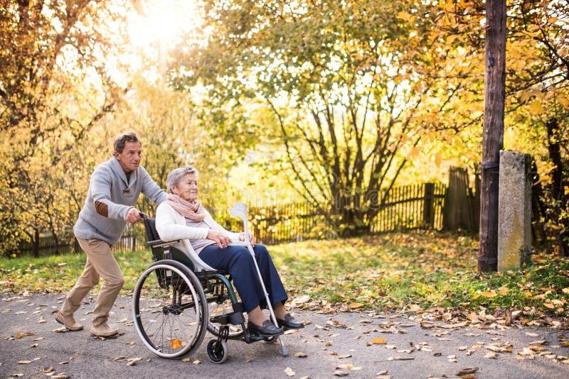 Ανώτεροι άνδρας και γυναίκα στην αναπηρική καρέκλα στη φύση φθινοπώρου στοκ εικόνες με δικαίωμα ελεύθερης χρήσης