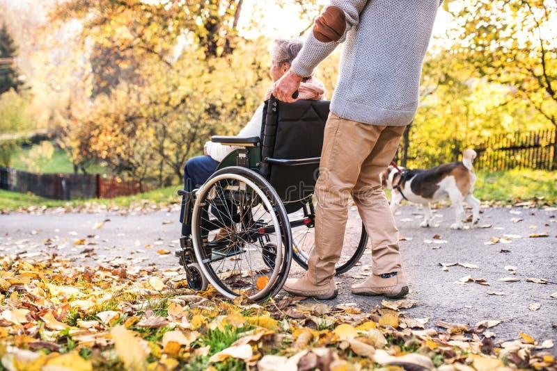 Ανώτεροι άνδρας και γυναίκα στην αναπηρική καρέκλα στη φύση φθινοπώρου στοκ φωτογραφία με δικαίωμα ελεύθερης χρήσης