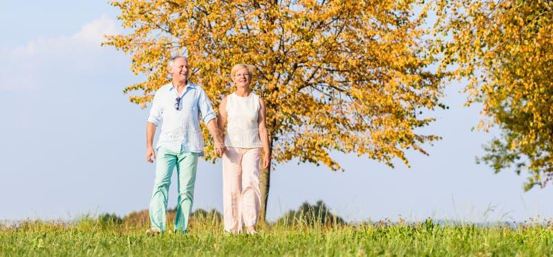 Ανώτεροι ζεύγος, γυναίκα και άνδρας, που έχουν τον περίπατο στοκ εικόνα
