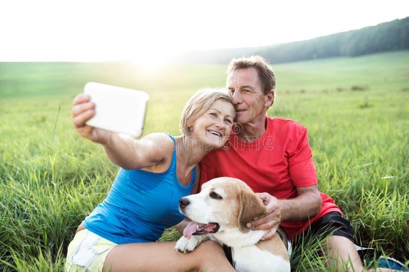 Ανώτεροι δρομείς με τη στήριξη σκυλιών, που παίρνει selfie Ηλιόλουστη φύση στοκ εικόνες