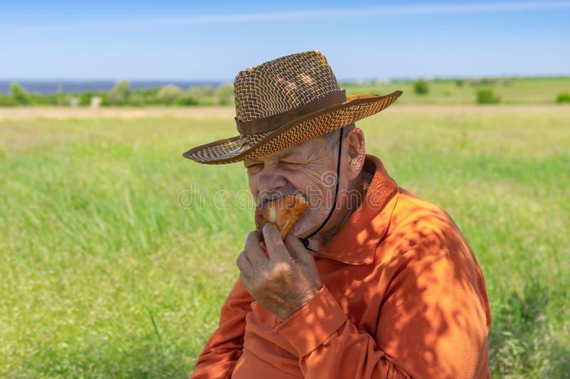 Ανώτερος αγρότης που τρώει χειροποίητο patty κάτω από τη σκιά δέντρων κοντά στον τομέα του στοκ φωτογραφία με δικαίωμα ελεύθερης χρήσης