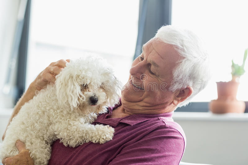 Ανώτερο άτομο που κρατά ένα σκυλί στοκ εικόνες