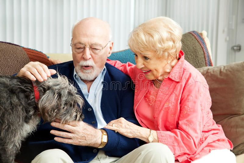 Ανώτερο ζεύγος - εραστές σκυλιών στοκ εικόνα με δικαίωμα ελεύθερης χρήσης