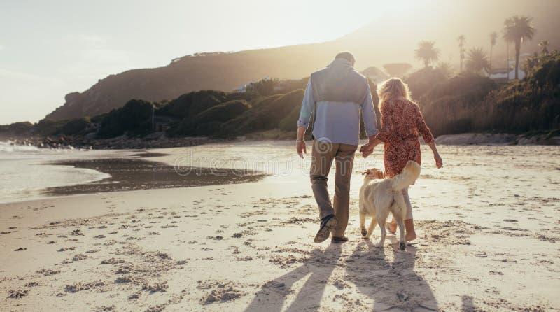 Ανώτερο ζεύγος με το σκυλί κατοικίδιων ζώων στην παραλία στοκ εικόνες με δικαίωμα ελεύθερης χρήσης