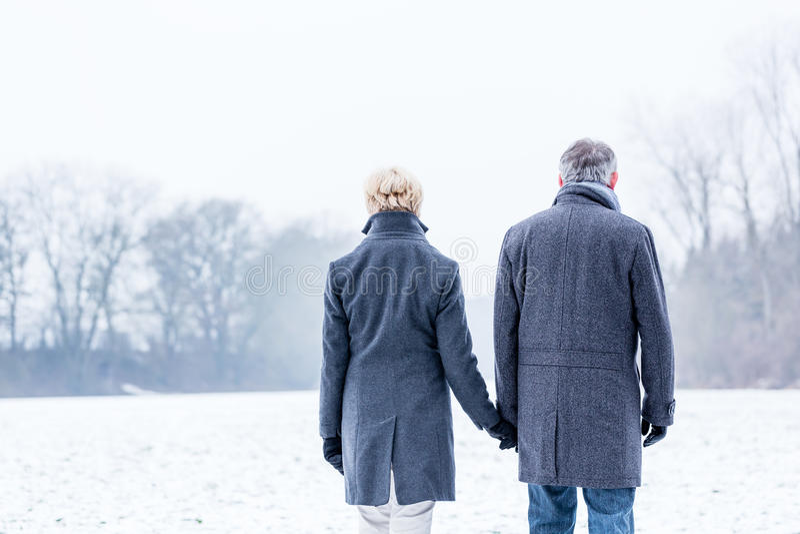 Ανώτερο ζεύγος που έχει το χειμερινό περίπατο στοκ φωτογραφίες με δικαίωμα ελεύθερης χρήσης