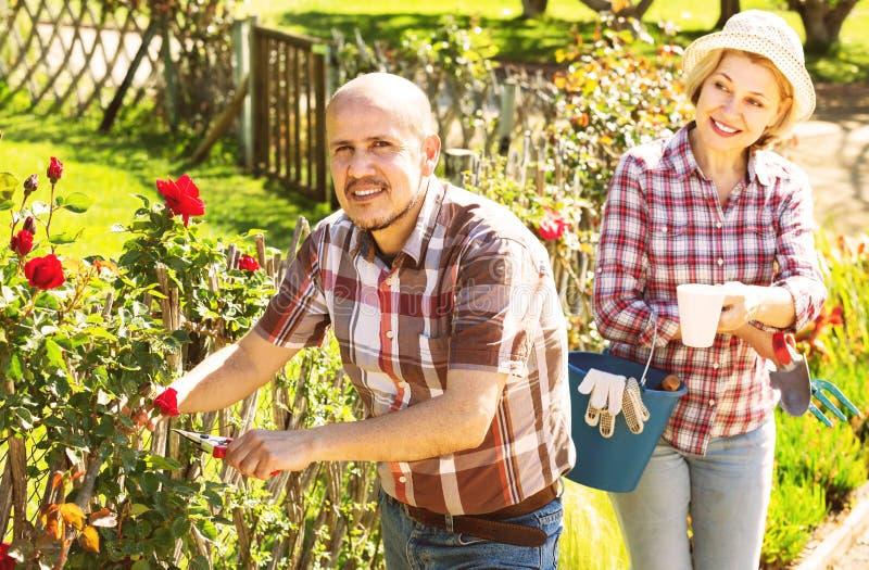 Ανώτερο ζεύγος που εργάζεται στον κήπο στοκ φωτογραφία με δικαίωμα ελεύθερης χρήσης