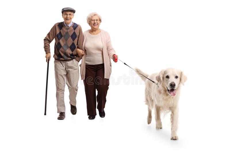 Ανώτερο ζεύγος που περπατά ένα σκυλί στοκ φωτογραφίες με δικαίωμα ελεύθερης χρήσης
