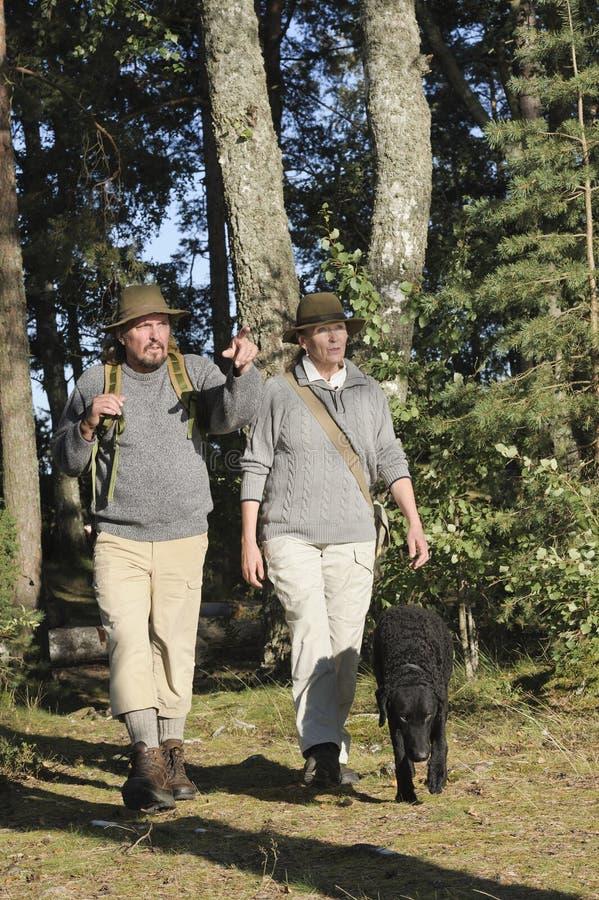 Ανώτερο ζεύγος που στο δάσος στοκ φωτογραφία με δικαίωμα ελεύθερης χρήσης