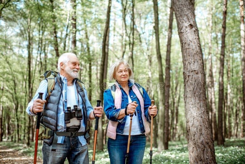 Ανώτερο ζεύγος που στο δάσος στοκ φωτογραφίες