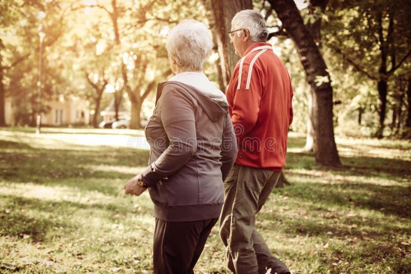Ανώτερο ζεύγος στον αθλητισμό που ντύνει το jogging πάρκο γουρνών στοκ εικόνες