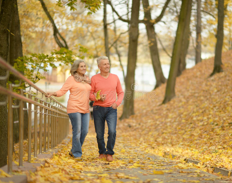 Ανώτερο ζεύγος στο πάρκο φθινοπώρου στοκ φωτογραφίες