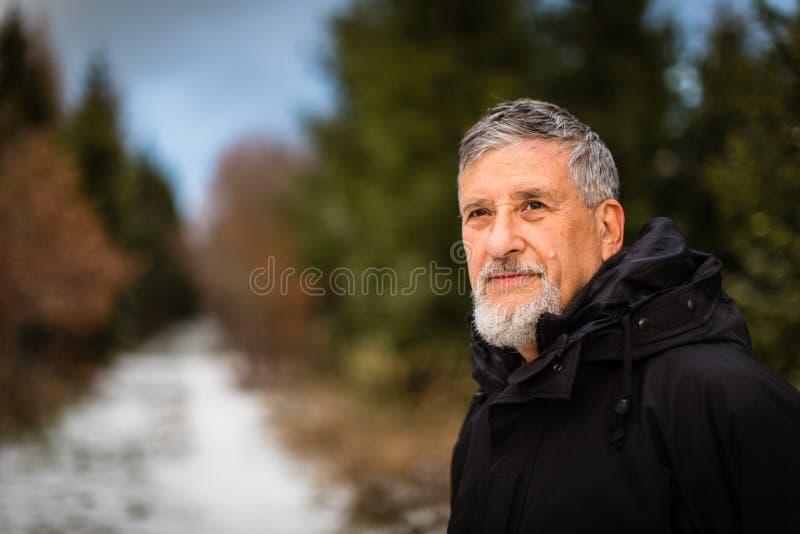 Ανώτερο σκανδιναβικό περπάτημα ατόμων, απόλαυση υπαίθρια στοκ εικόνα