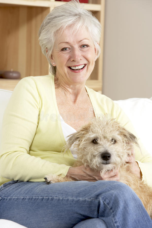 Ανώτερο σκυλί εκμετάλλευσης γυναικών στον καναπέ στοκ εικόνες