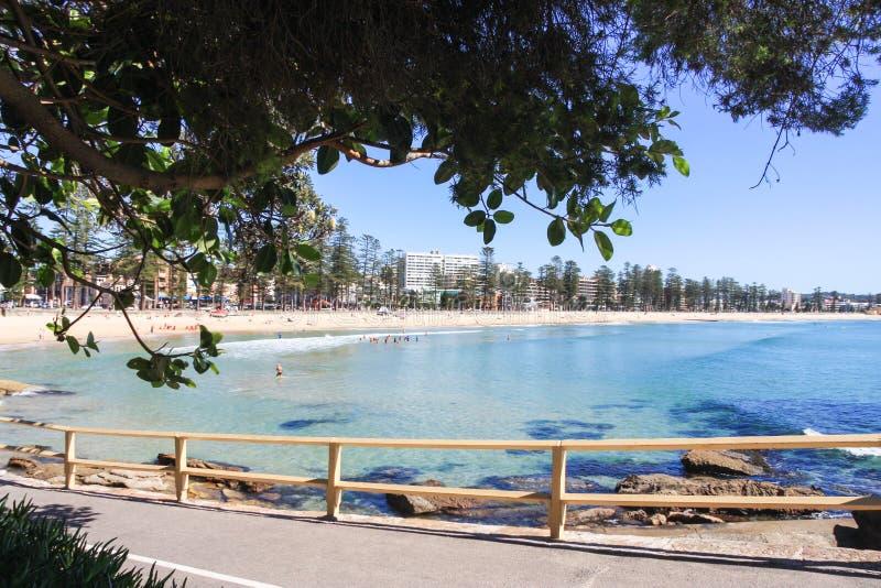 Ανδρική παραλία Σύδνεϋ Αυστραλία στοκ εικόνες με δικαίωμα ελεύθερης χρήσης