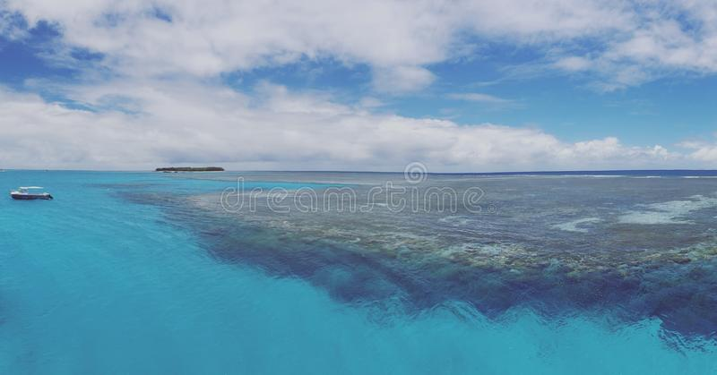 Απίστευτη θάλασσα κοραλλιών στοκ εικόνες