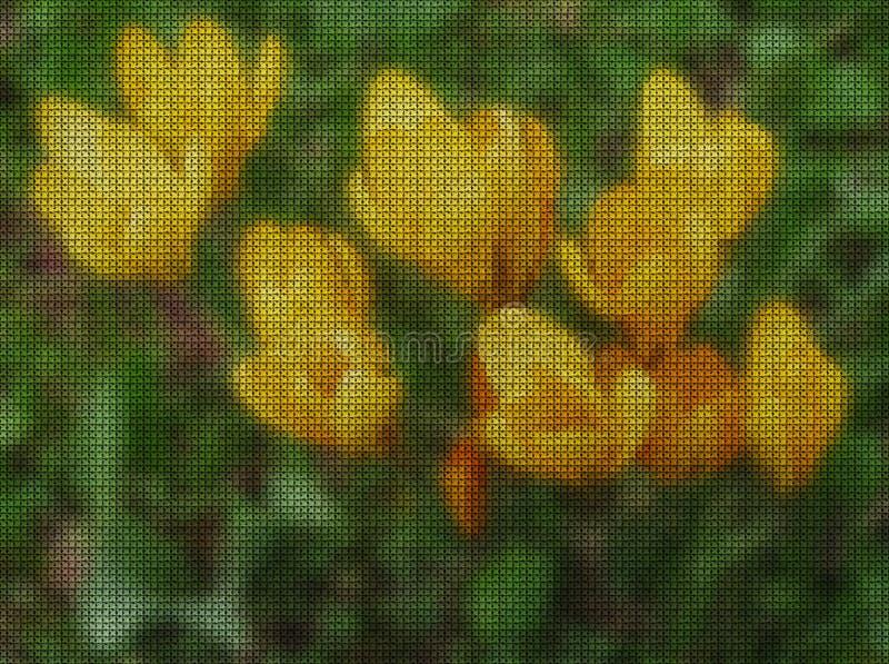 Απεικονίσεις E Σαφράνι, κρόκος διανυσματική απεικόνιση