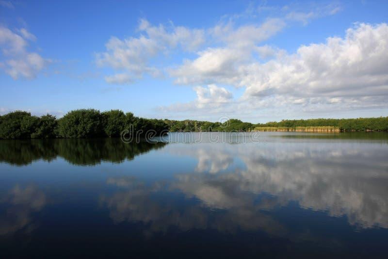 Απεικονισμένο Cloudscape, εθνικό πάρκο Everglades στοκ εικόνες