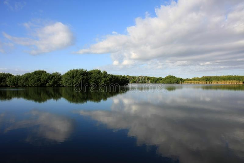 Απεικονισμένο Cloudscape, εθνικό πάρκο Everglades στοκ φωτογραφίες
