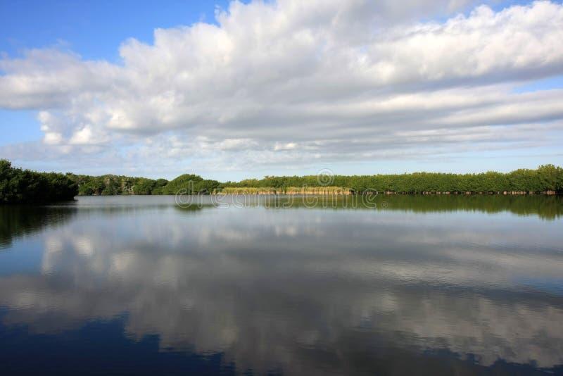 Απεικονισμένο Cloudscape, εθνικό πάρκο Everglades στοκ εικόνα με δικαίωμα ελεύθερης χρήσης