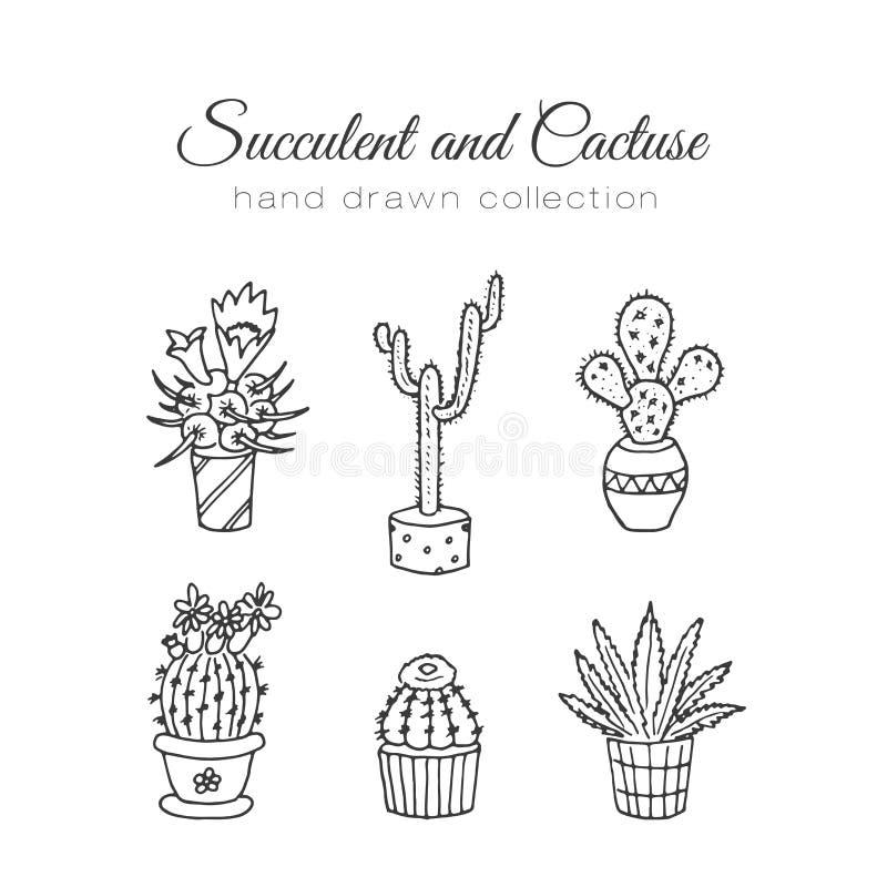 Απεικόνιση κάκτων Διανυσματικοί succulent και οι κάκτοι δίνει το συρμένο σύνολο Στις εγκαταστάσεις πορτών στα δοχεία ελεύθερη απεικόνιση δικαιώματος