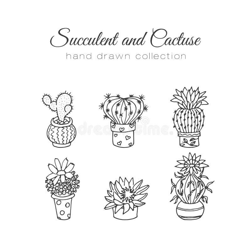 Απεικόνιση κάκτων Διανυσματικοί succulent και οι κάκτοι δίνει το συρμένο σύνολο Στις εγκαταστάσεις πορτών στα δοχεία απεικόνιση αποθεμάτων