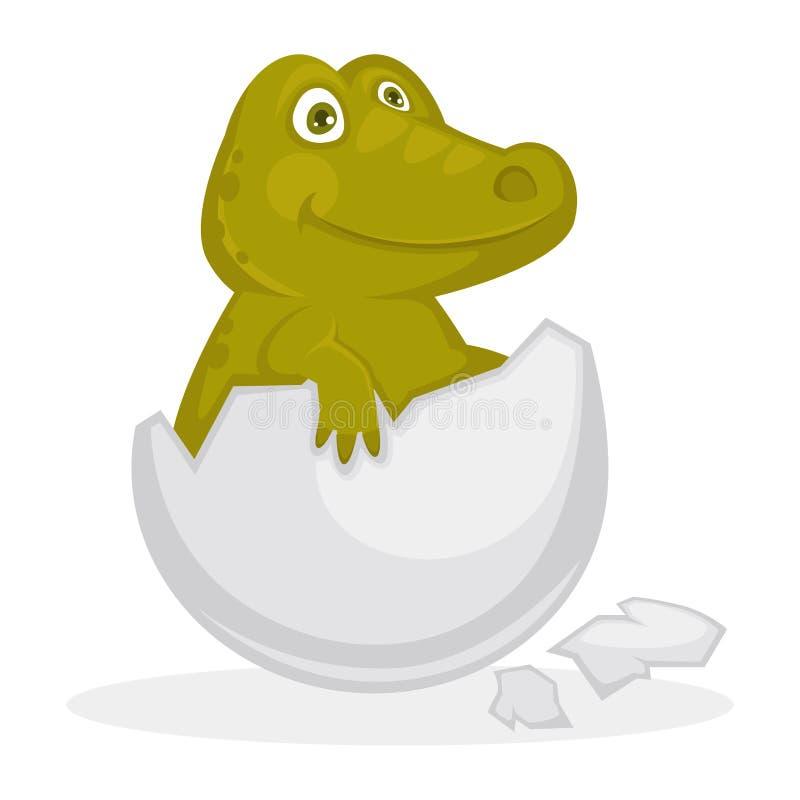 Απεικόνιση κοχυλιών αυγών κροκοδείλων μωρών απομονωμένη μέσα ραγισμένη διανυσματική απεικόνιση