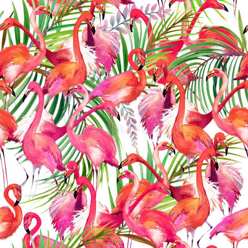 Απεικόνιση πουλιών φλαμίγκο Watercolor ελεύθερη απεικόνιση δικαιώματος