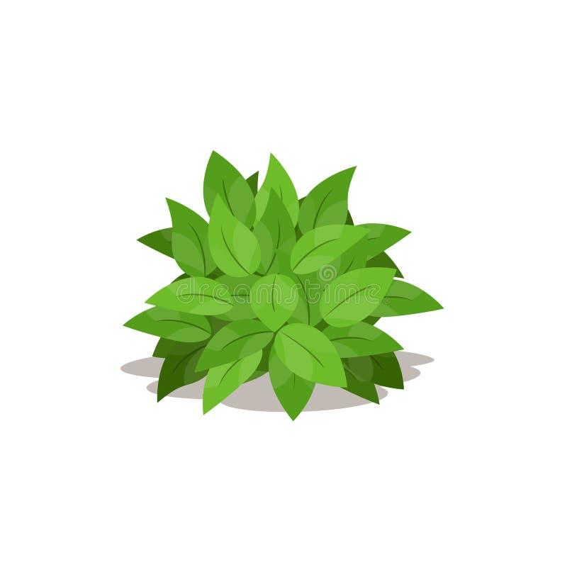 Απεικόνιση του πράσινου θάμνου Κινούμενα σχέδια των εγκαταστάσεων διακοσμήσεων διανυσματική απεικόνιση