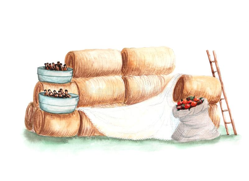 Απεικόνιση του σανού ζώνης φωτογραφιών watercolor απεικόνιση αποθεμάτων