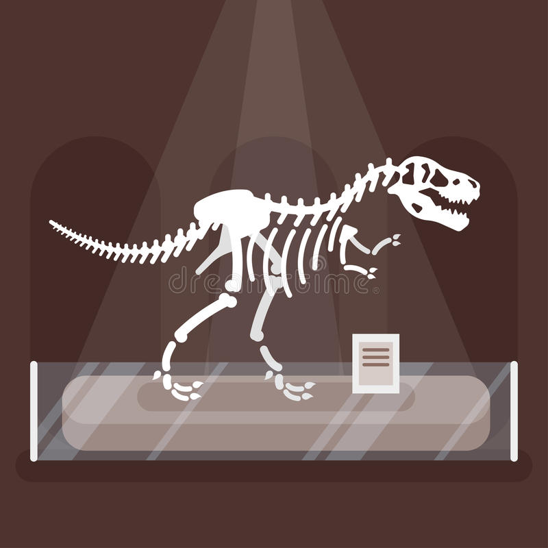Απεικόνιση του σκελετού δεινοσαύρων στο μουσείο απεικόνιση αποθεμάτων