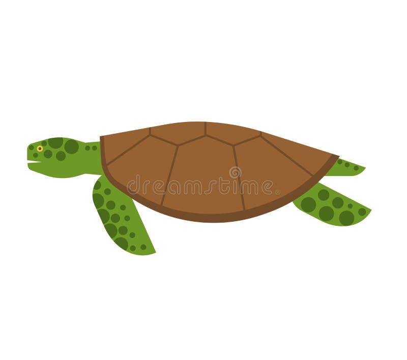 Απεικόνιση χελωνών θάλασσας διανυσματική απεικόνιση