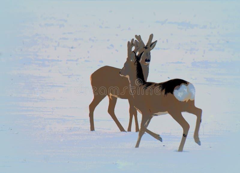 απεικόνιση Deers αυγοτάραχων κοντά σε Siauliai, Λιθουανία Ενδιαφέρουσα άποψη στοκ εικόνες με δικαίωμα ελεύθερης χρήσης