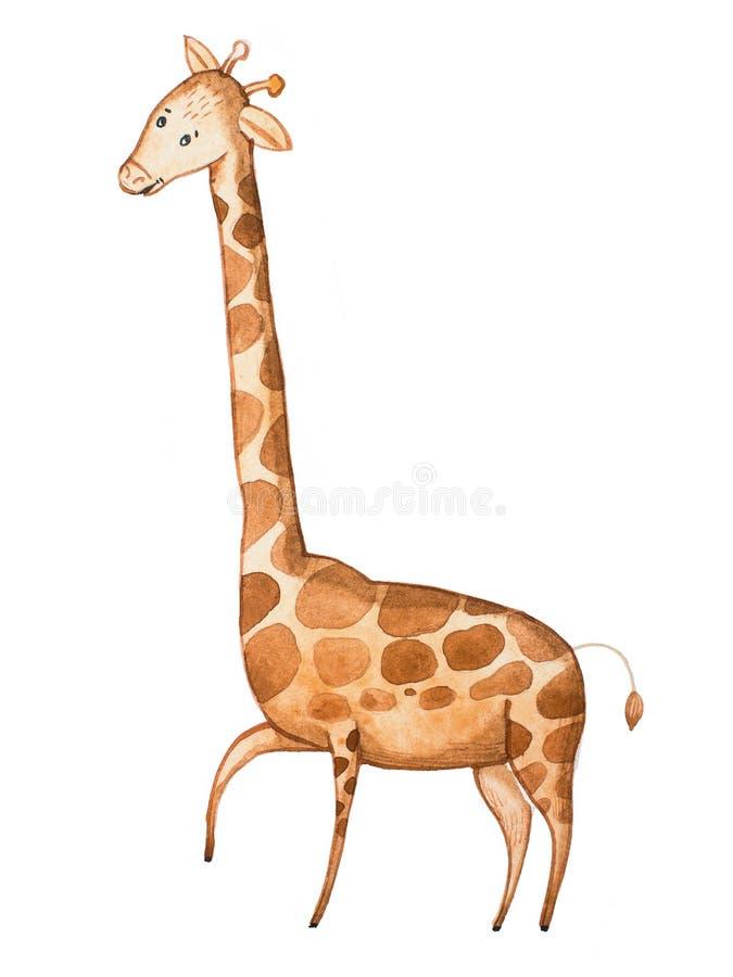 Απεικόνιση Watercolor αστείο giraffe κινούμενων σχεδίων που επισύρεται την προσοχή σε χαρτί απεικόνιση αποθεμάτων
