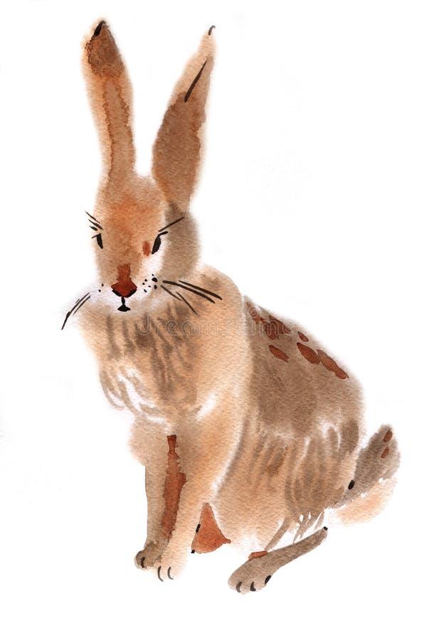Απεικόνιση Watercolor ενός κουνελιού απεικόνιση αποθεμάτων