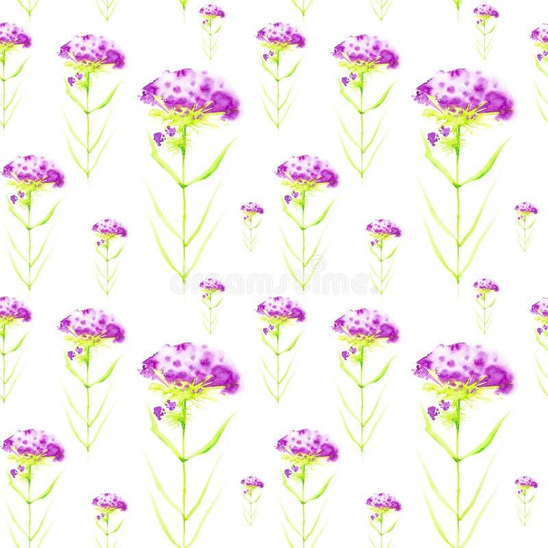 Απεικόνιση Watercolor με τα όμορφα αφηρημένα πορφυρά λουλούδια o r ελεύθερη απεικόνιση δικαιώματος